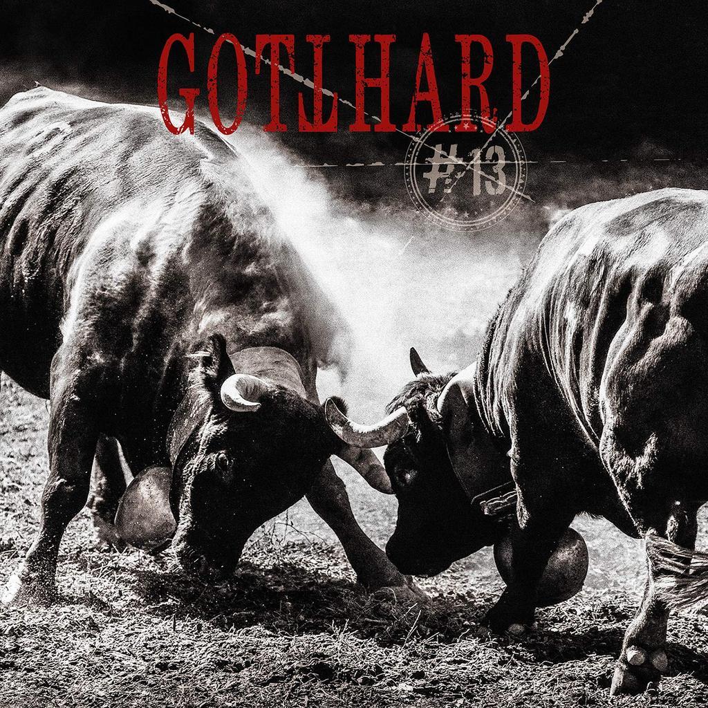 #13 [treize] | Gotthard